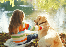 Dievčatko a jej kamarát labrador
